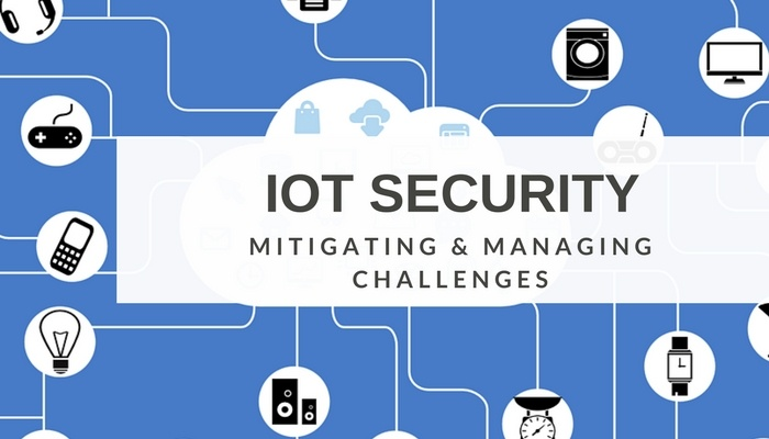Managing and Mitigating IoT Challenges & Risks.jpg